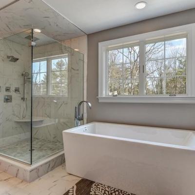 Shower Door - Clear